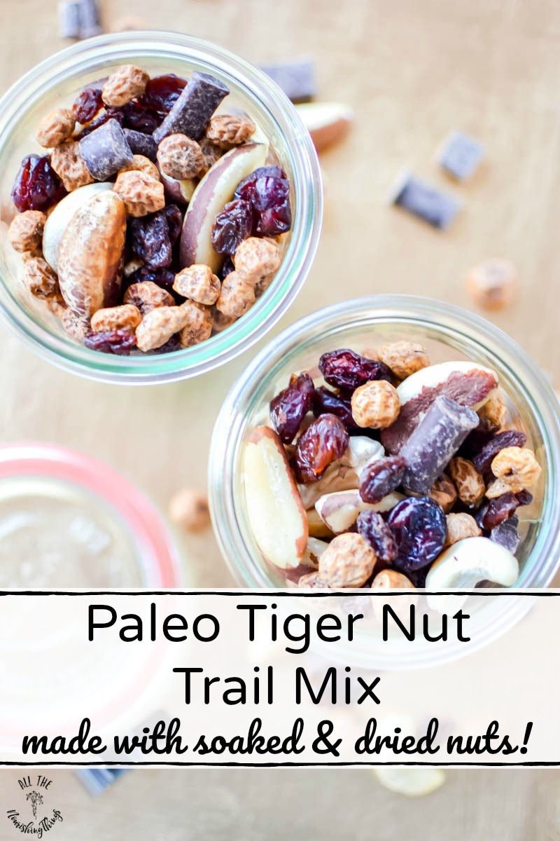jars of paleo tiger nut trail mix with text overlay
