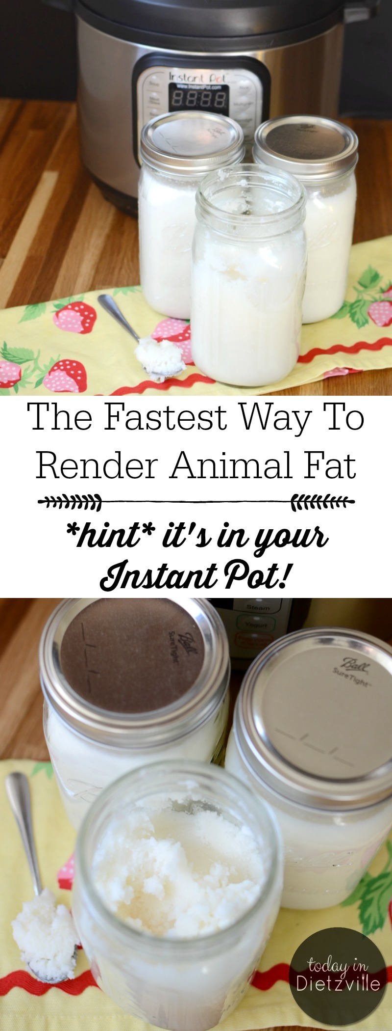 jars of white rendered animal fat in the Instant Pot