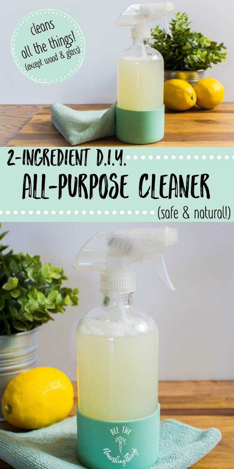 2-ingredient diy all-purpose cleaner in glass bottle with text overlay