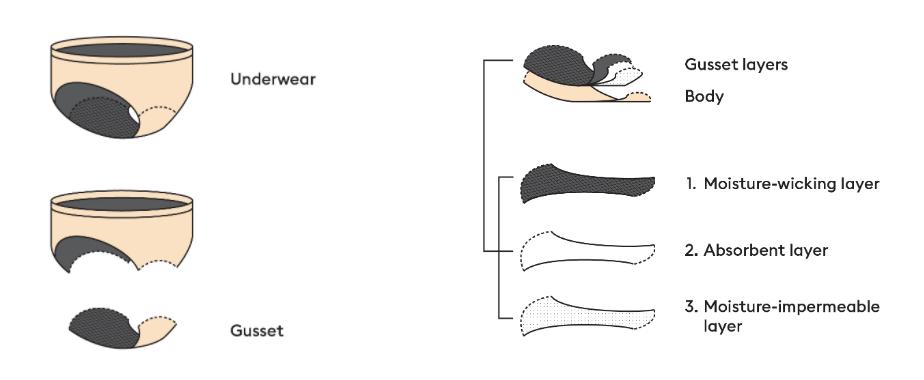 diagram of shethinx period underwear