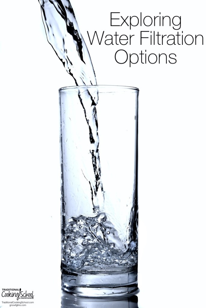 Exploring Water Filtration Options