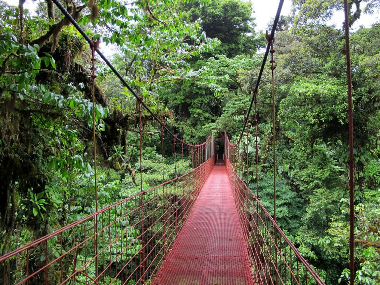 The-Best-Countries-to-Visit-solo-costa-rica