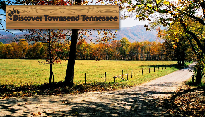 Discover Townsend Tennessee
