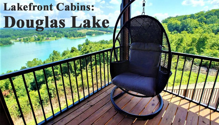 Lakefront Cabins Douglas Lake