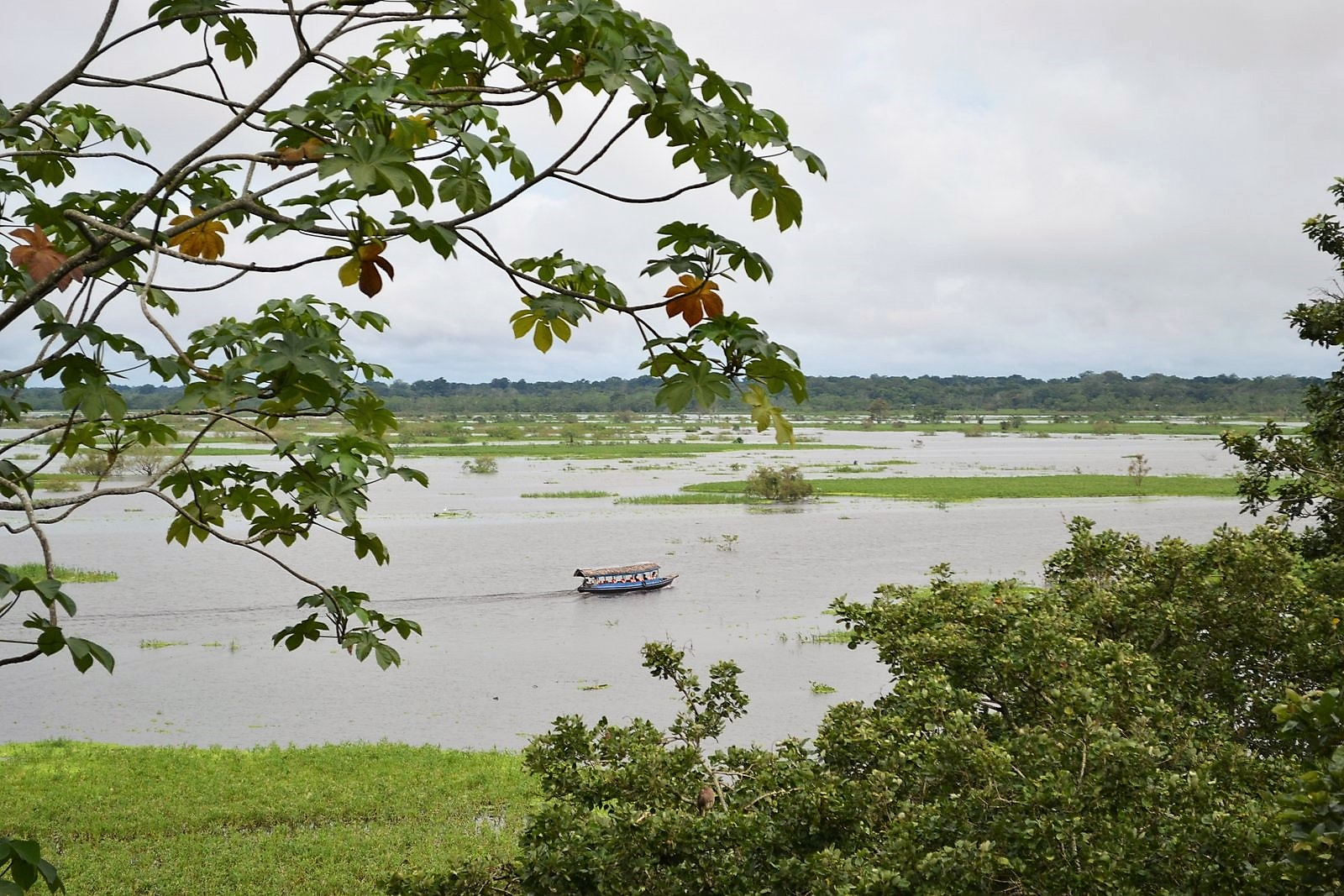 Amazing Amazon: Tropical Adventure Starts in Peru, Where Environmental Wonders Await