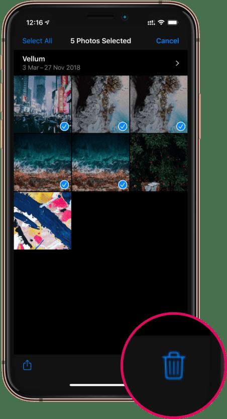 Trash Delete iPhone Photos