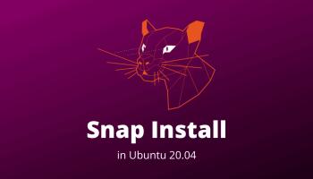 Snap Install Ubuntu 20.04