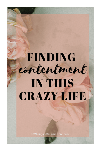 finding_contentment_crazy_life