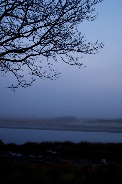 good harbor fog