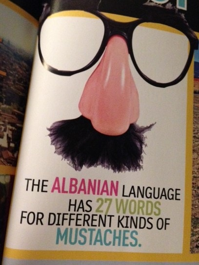 Albanian mustaches