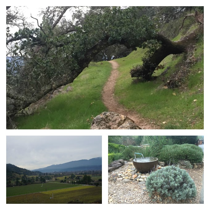 Calistoga Ranch hiking