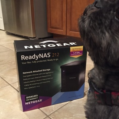 Are you Ready for NAS? NETGEAR makes storage sexy.