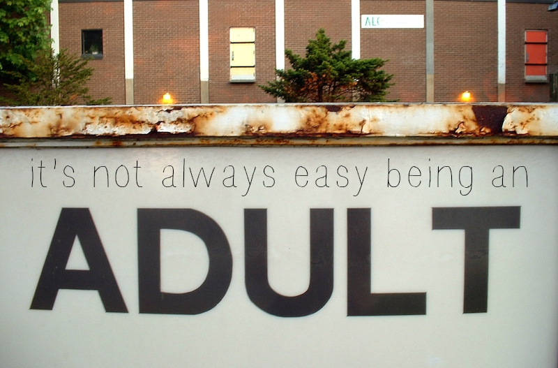 10 Things I Hate About Adulting