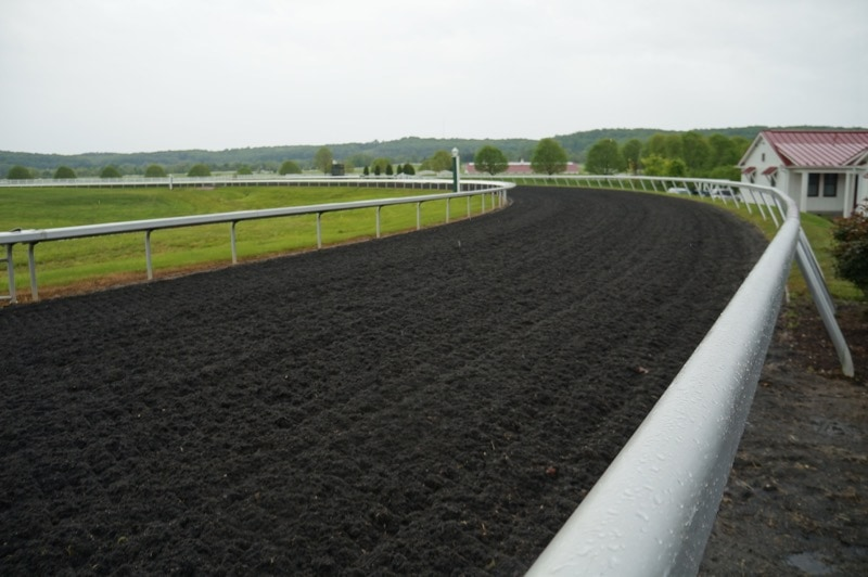 Tapeta All-Weather surface at Sagamore Farm