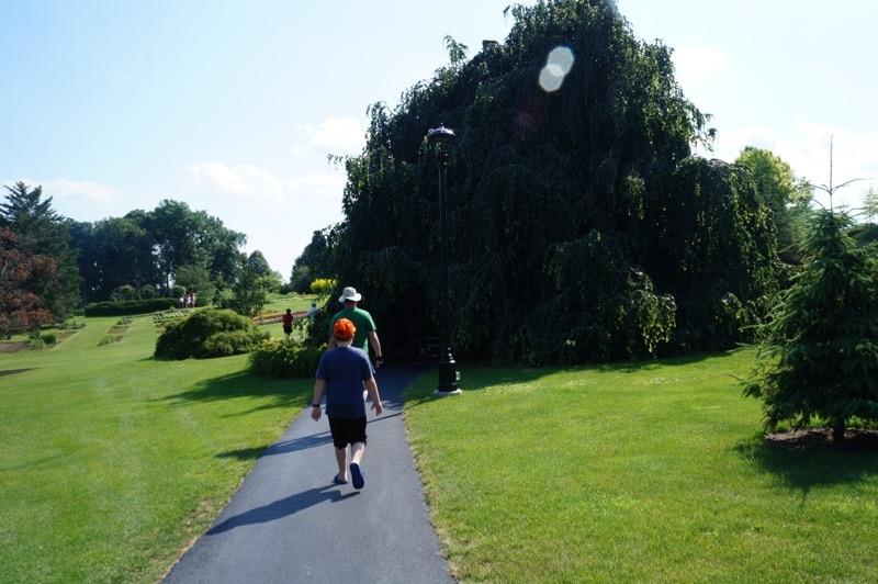 Walking toward the Rose Garden