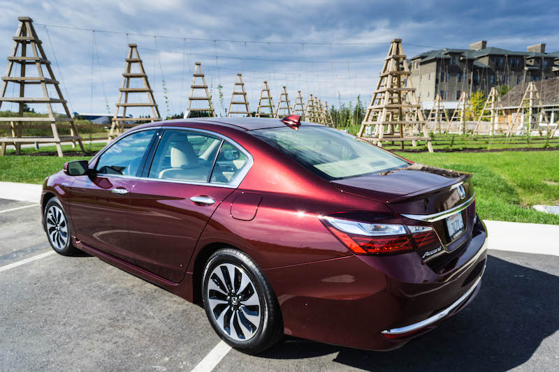 honda-accord-rear