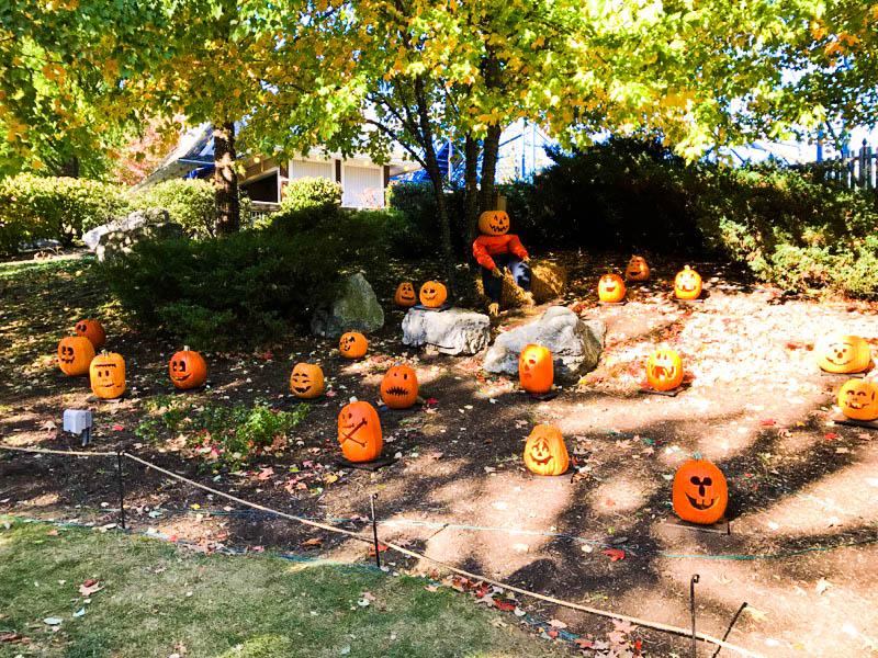 Hersheypark carved pumpkins