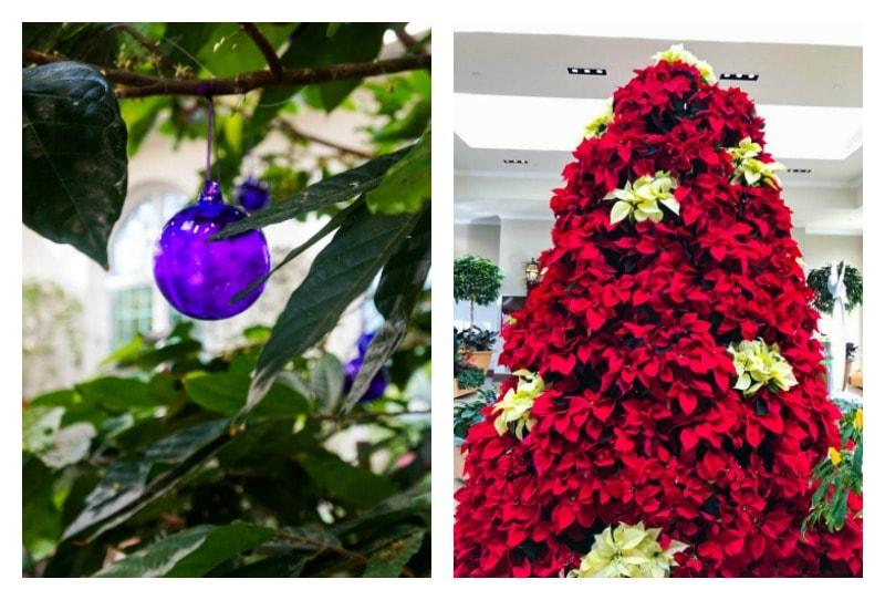 hershey-gardens-at-christmas