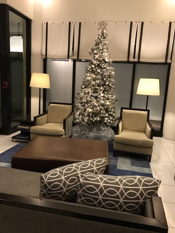Lobby tree - Loews Annapolis
