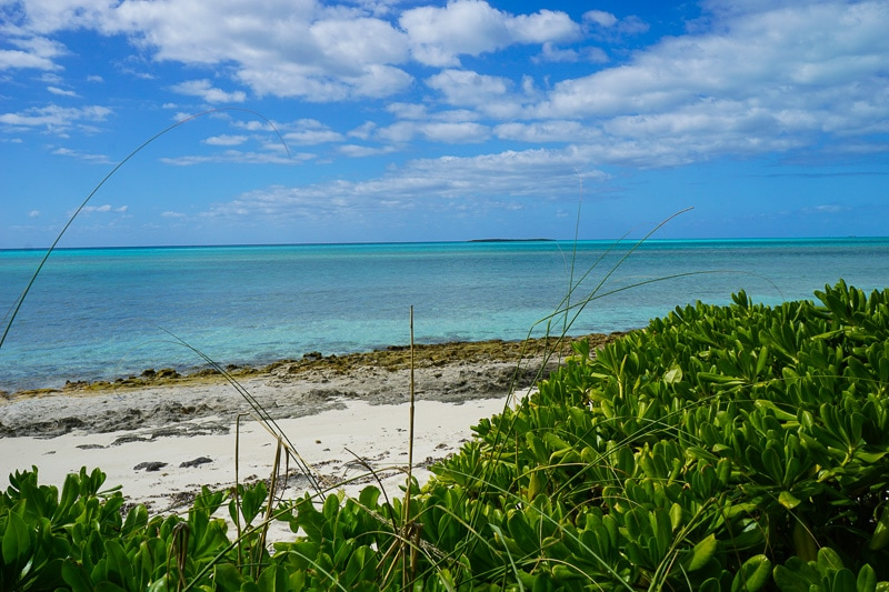 Unspoiled beach at Castaway Cay