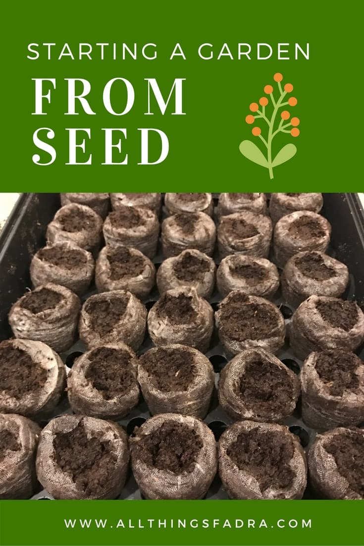 Starting a Garden from Seed