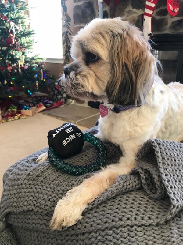 Layla and her stuffed coal