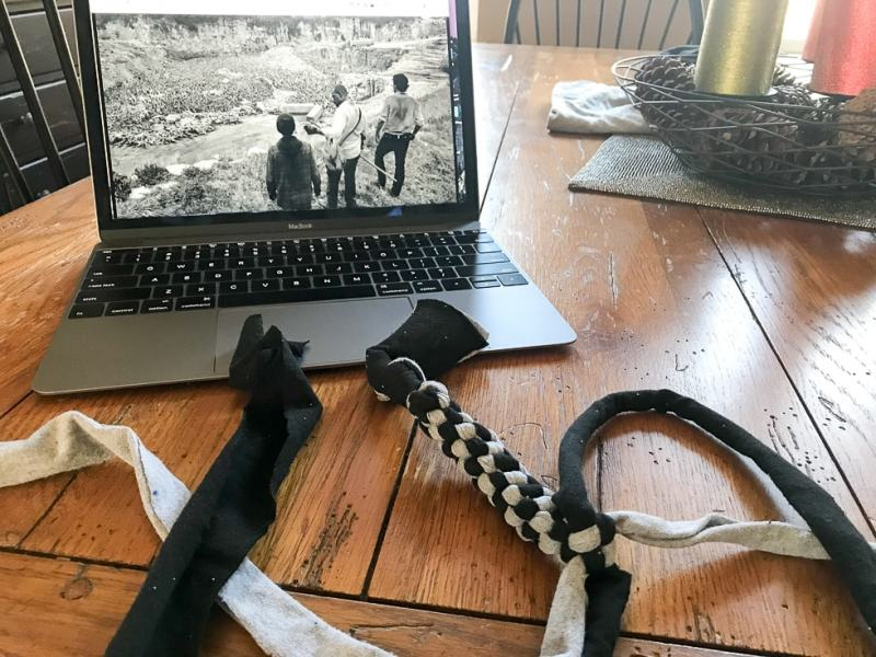 Time to make for DIY braided dog toy
