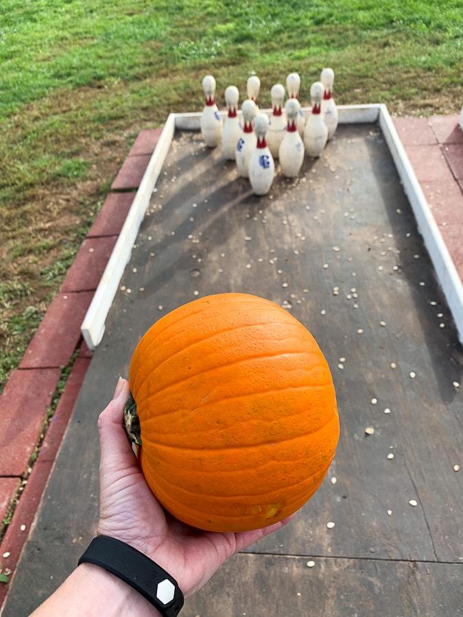 Fields of Adventure pumpkin bowling