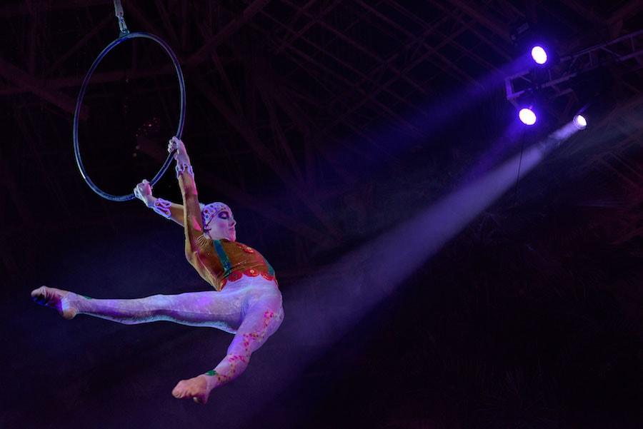 Cirque Dreams Unwrapped Aerialist