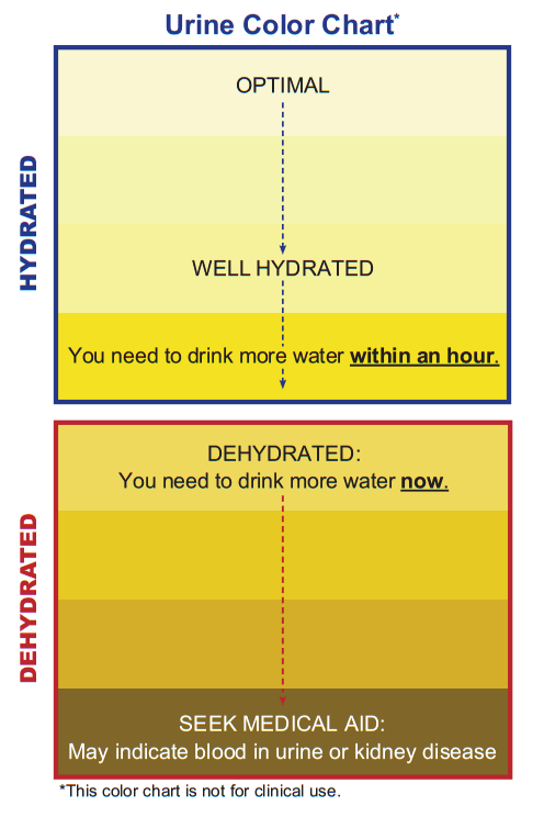 Urine Color Chart - Hdyration Dehydrated