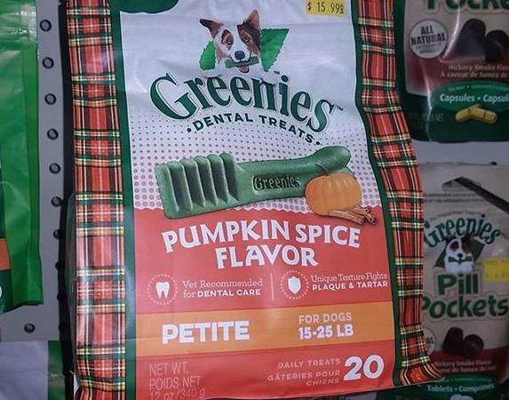 Pumpkin Spice Greenies