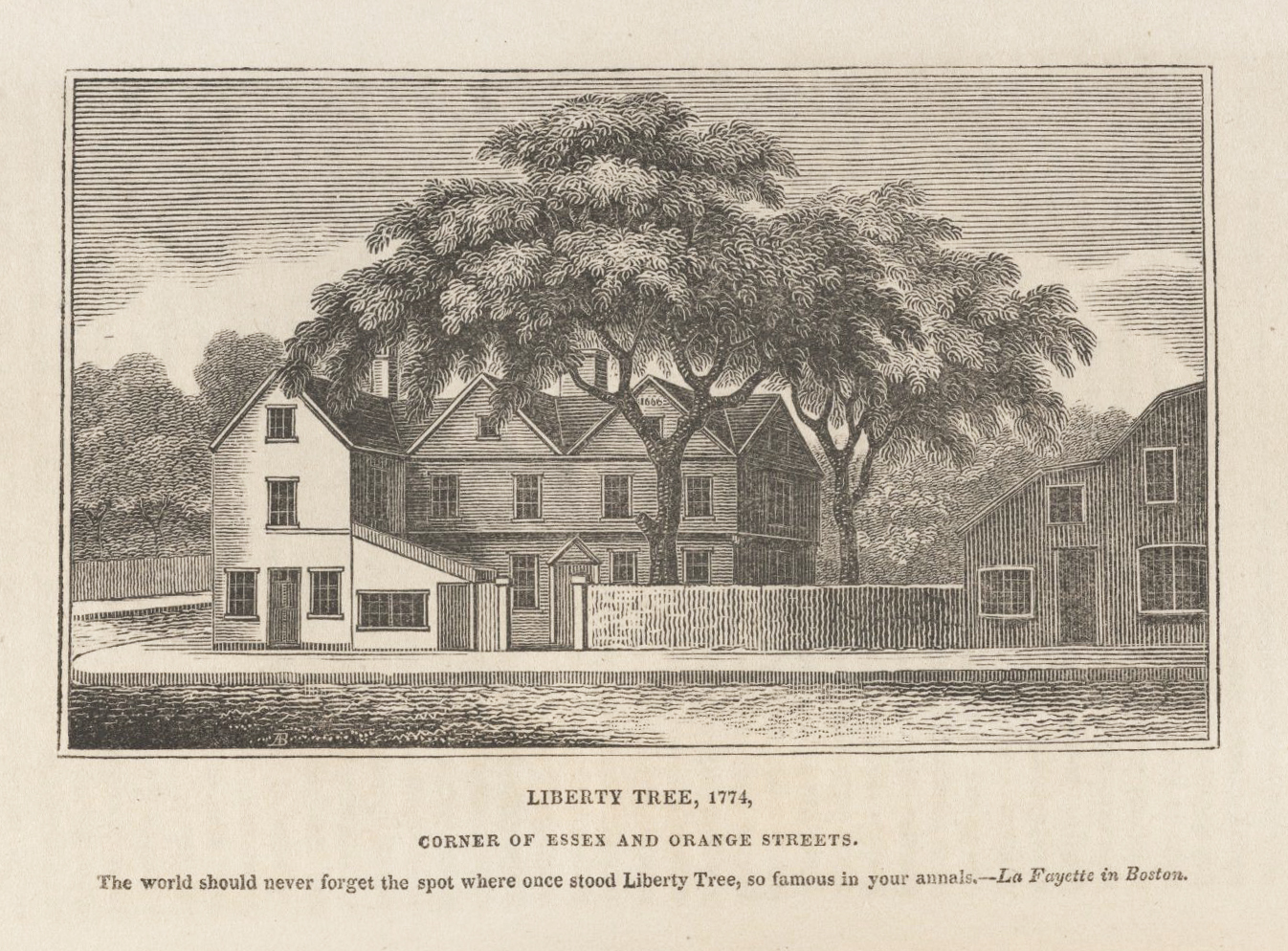 Visiting Boston39s Liberty Tree Site Journal Of The American