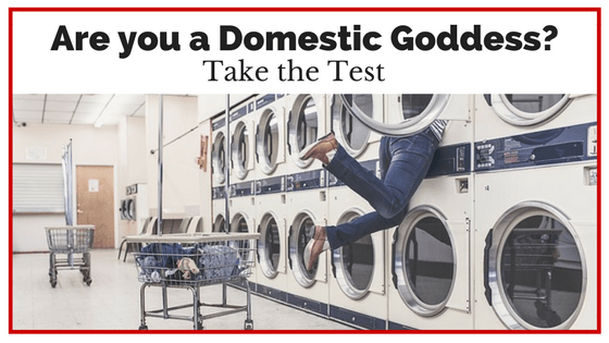 take the allthingsmomsydney test to see if you are a domestic goddess