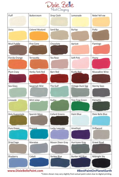 Dixie Belle Paint | Chalk and Mineral Paint | Color Chart 2017