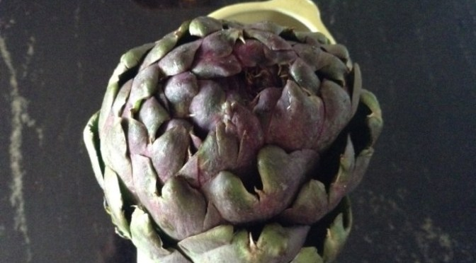 THE AMAZING ARTICHOKE