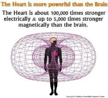 the-heart-is-more-stronger-than-the-brain[1]
