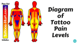 Diagram of tattoo pain hotspots [chart]  Alltop Viral