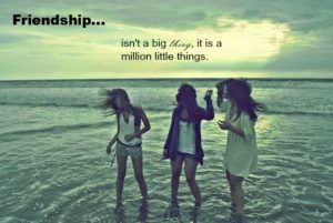 friendship-is-not-a-big-thing-whatsapp-dp