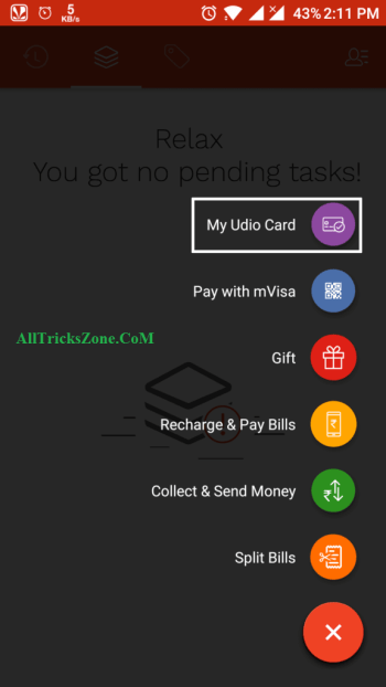 Virtual Udio Visa Card