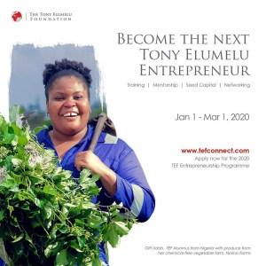 Tony Elumelu Foundation program