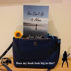 @BooksInHandbag