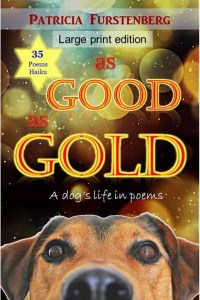 Click to buy from Amazon: As Good as Gold, a Dog's Life in Poems and Haiku