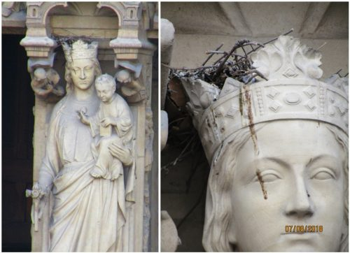 Madonna-with-Child-Portal-of-the-Virgin-and-a-bird-nest-Notre-Dame-Cathedral-by-Lysandra-Furstenberg - To walk (tread) on eggshells - an idiom as old as the revolutionary 16th century