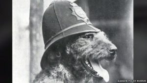Edwin Richardson trained Airedale terriers for the police in Glasgow before supplying canine recruits for World War One.
