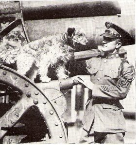 Dog Hero - Rags with Sergeant George E. Hickman, 16th Infantry, 26th Division.