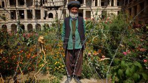 An Afghan garden