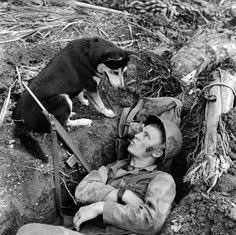 A war pup and his soldier friend