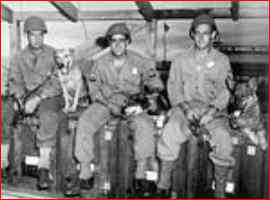 Six Members Of The 33rd QMC Patrol, , assigned to the 6th South African Armored Division in Italy, the first US K-9 patrol to help in Europe.