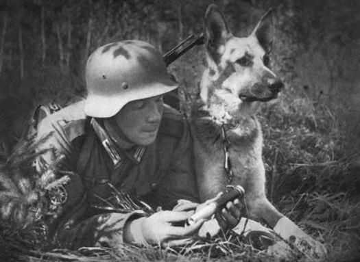 A German soldier reading a message while his German Shepherd dog keeps a watchful eye over the battlefield. Source: History Collection