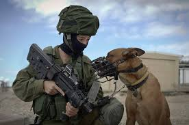 """War Dogs History after WW2 to the Fall of Berlin Wall, """"Oketz"""" is a special forces unit where man and his best friend serve together."""